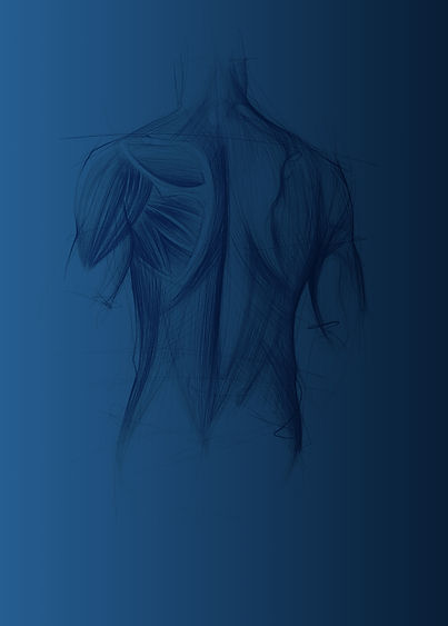 blue-male-back1.jpg
