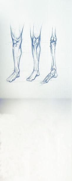 knee3.jpg