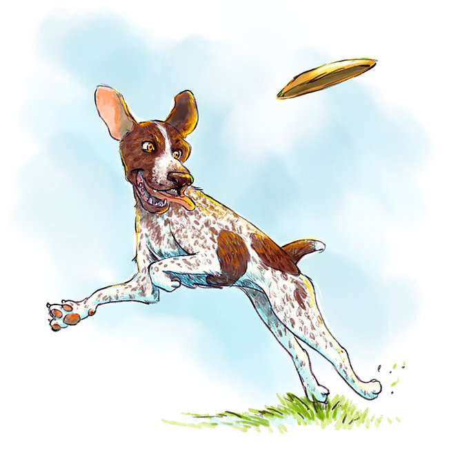 dog childrens book_spec.jpg