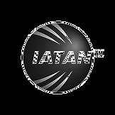 iatan-bw-1inch_edited.png