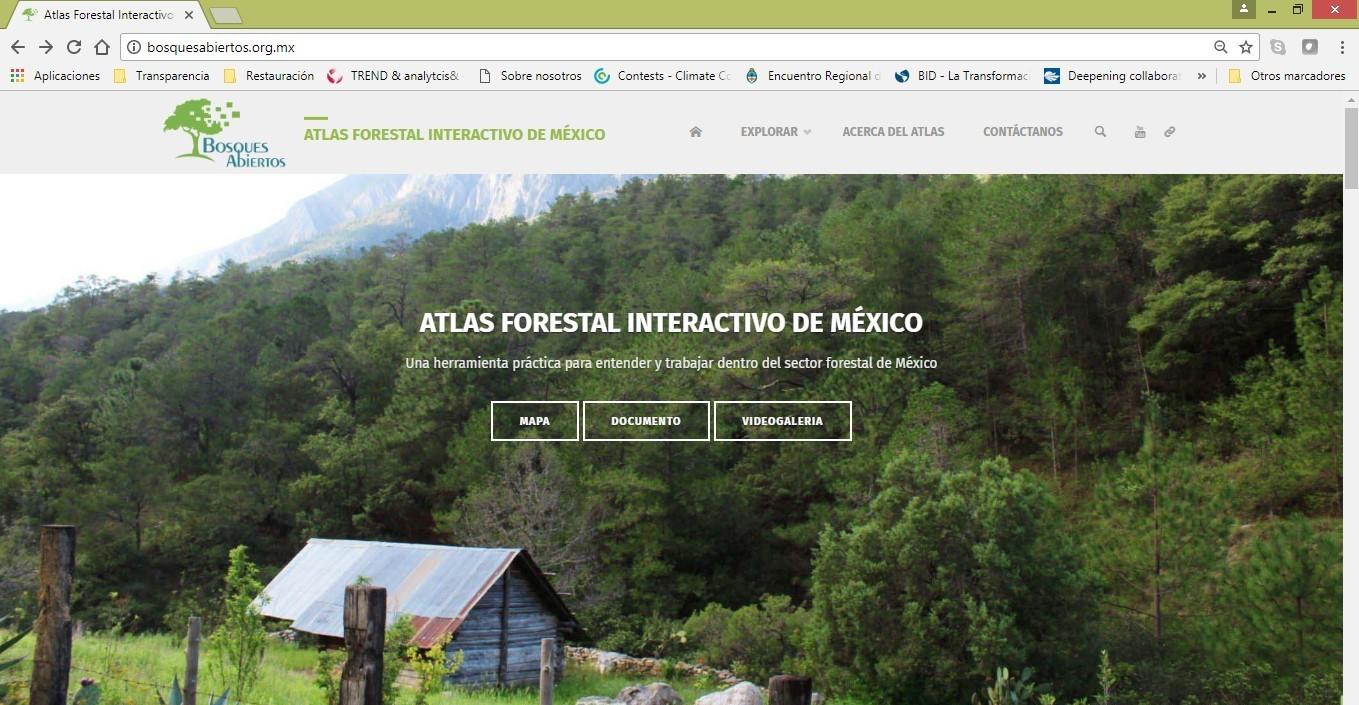 Bosques Abiertos