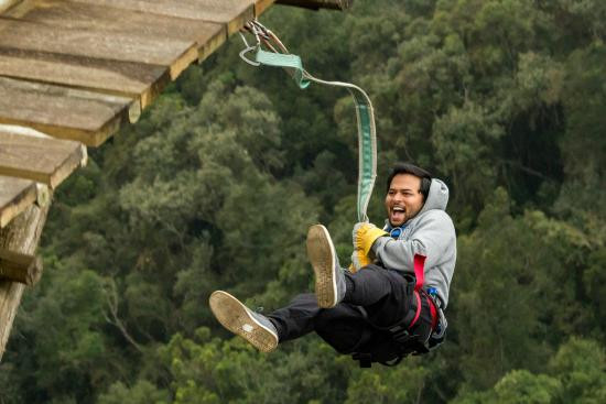 the-big-swing.jpg
