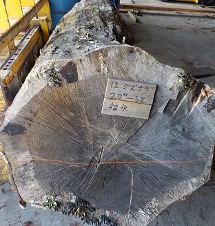 2.0M 直径68cm
