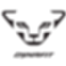 dynafit logo.png