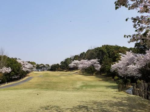 青山ゴルフクラブ13H