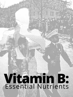 Vitamin B Essential Nutrient