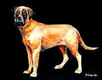 The Mastiff.jpg
