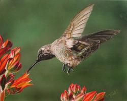 Savoring the Nectar