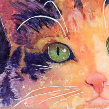 """Cat of Many Colors"" by Nancy Lee"