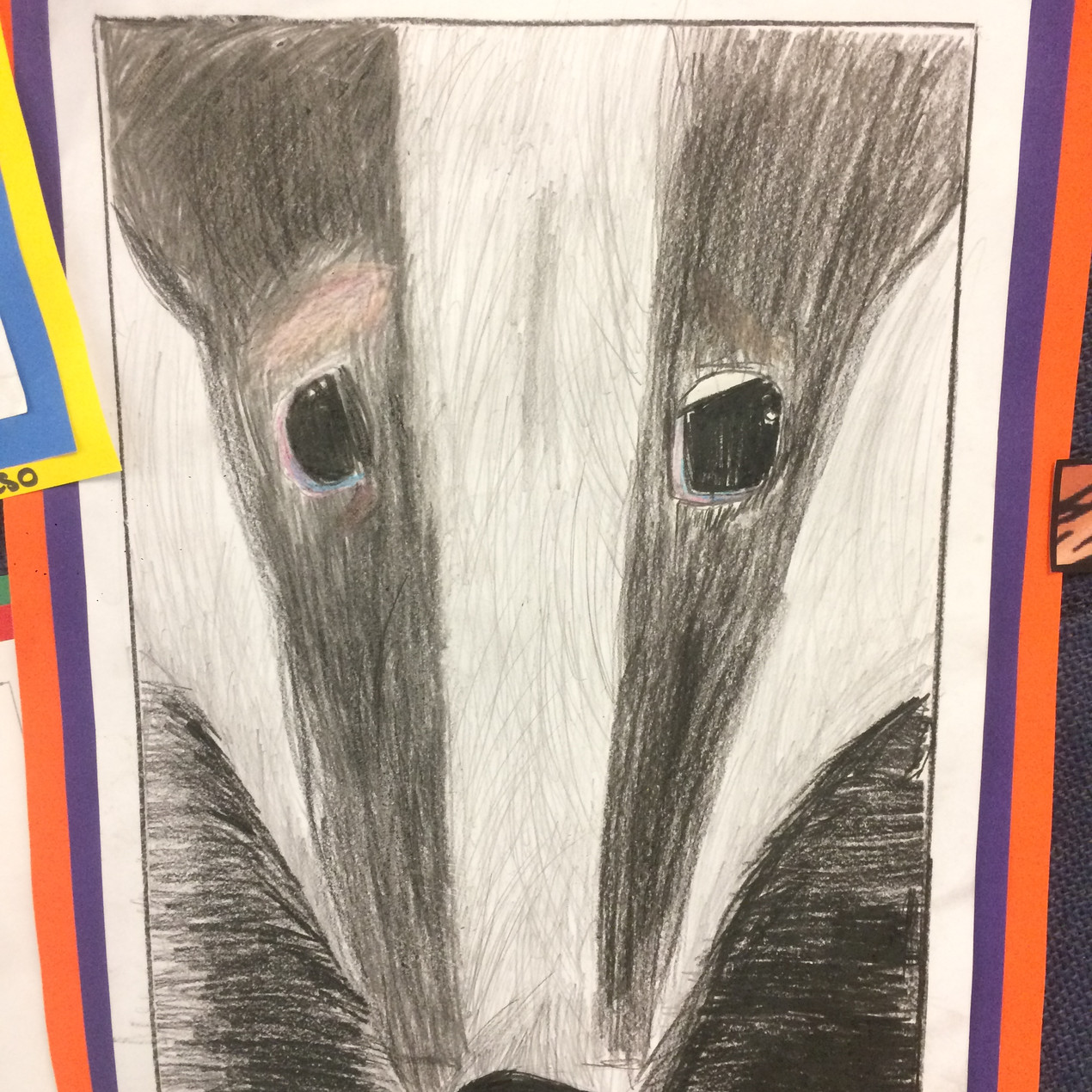 Primary School Animal Drawings