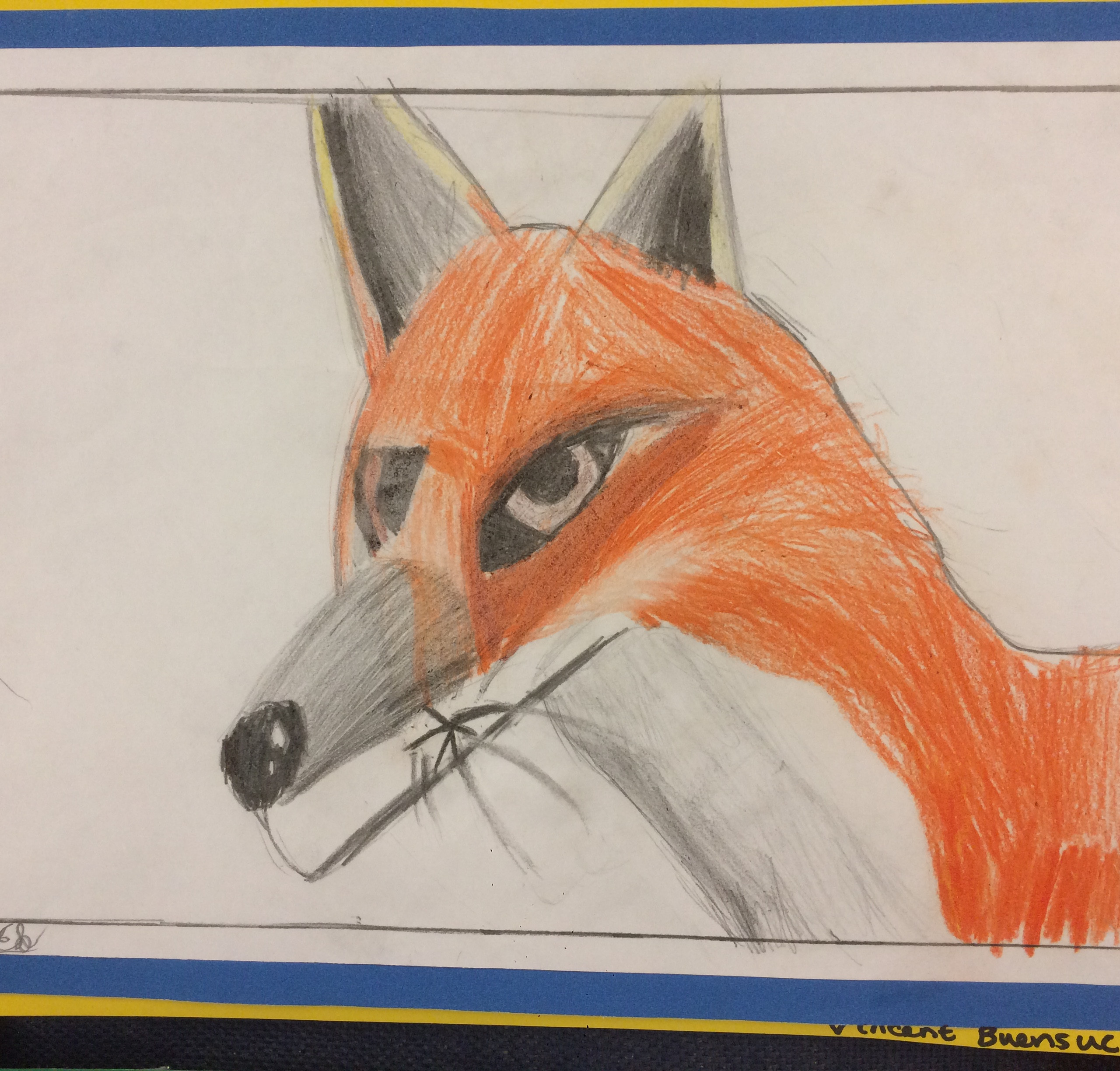 Primary School Animal Art Portrait Drawing colour pencil Lesson