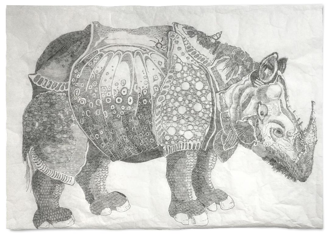 Rhinosceros domesticus 2018  Hgh  Res