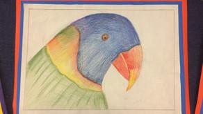 Animal Portrait Drawings