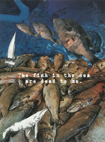 The Fish In The Sea Are Dead To Me