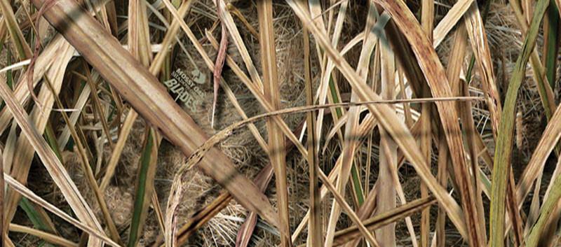shadowgrass-blades-mossy-oak.jpg