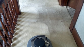 Carpet Cleaning with rotary cleaning tool