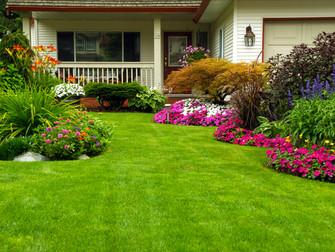 Top Garden Centers in Anne Arundel County