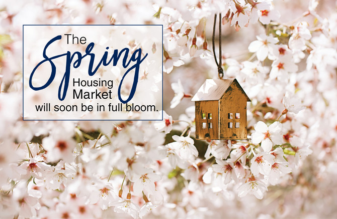 Has the Spring market bloomed early?