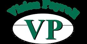 Vision Payroll Logo 2016 large (002).png