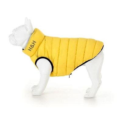 Yellow & Navy Puffer Jacket