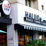 haliio_icon_1.jpg
