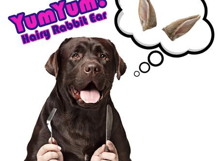 兔子小食對狗狗的好處⁉️