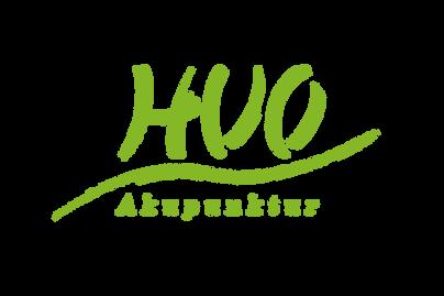Huo-Akupunktur.png
