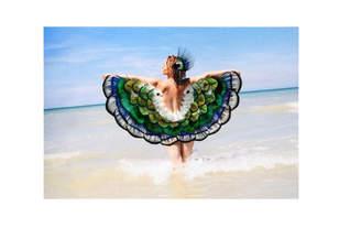 La danse des plumes