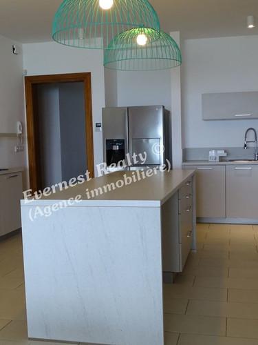 Kitchen- Real Estate Agency Mauritus
