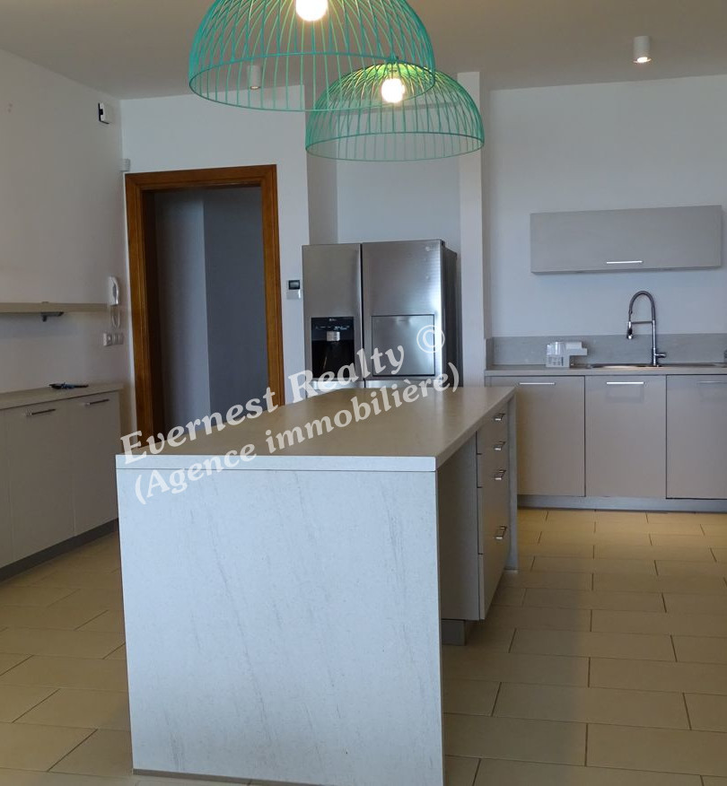 Kitchen- Real Estate Agency Mauritus