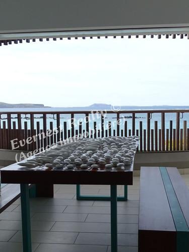 Terrace- Real Estate Agency Mauritus