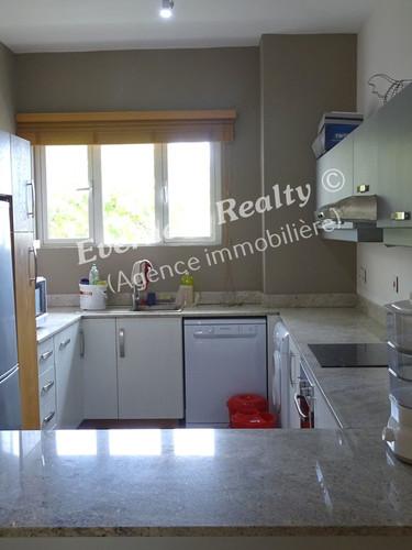 Kitchen- Real Estate Agency Mauritius