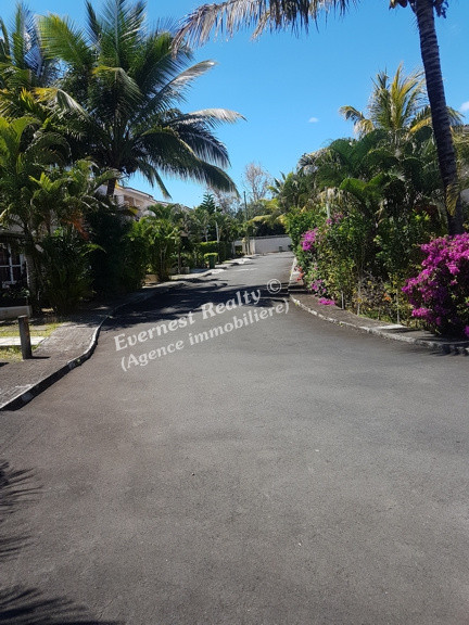 Complex- Real Estate Agency Mauritius