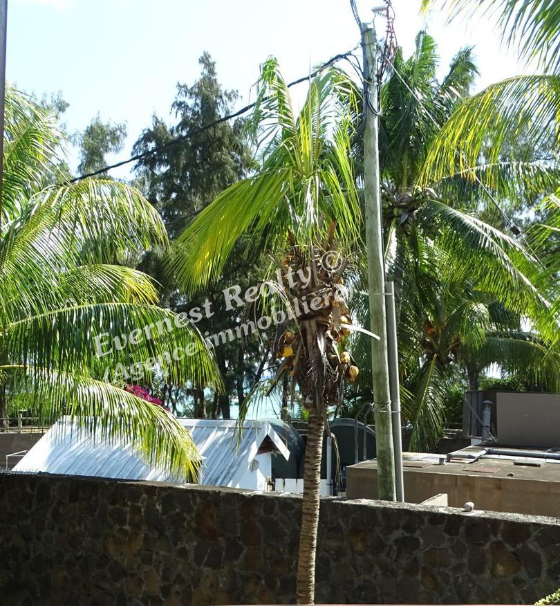 Terrace - Real Estate Agency Mauritius