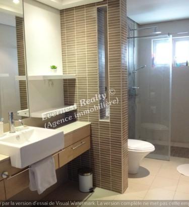 Bathroom Real Estate Agency Mauritius