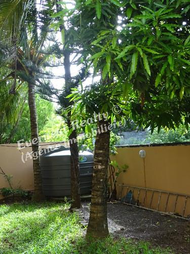 Shared garden- Real Estate Agency Mauritius