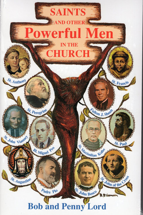 Saints And Other Powerful  Men In The Church book