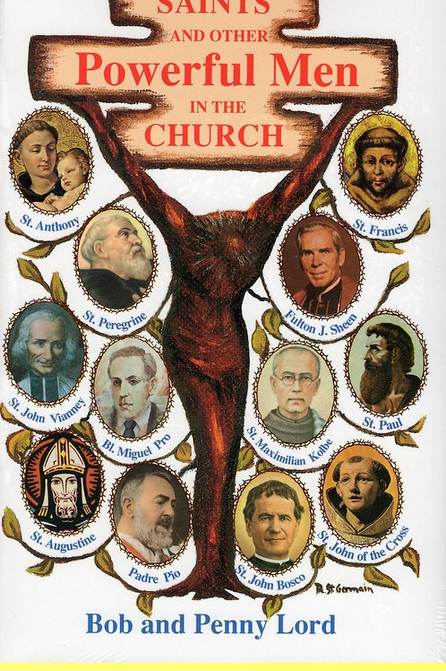 Saints and Other Powerful Men in the Church ebook PDF