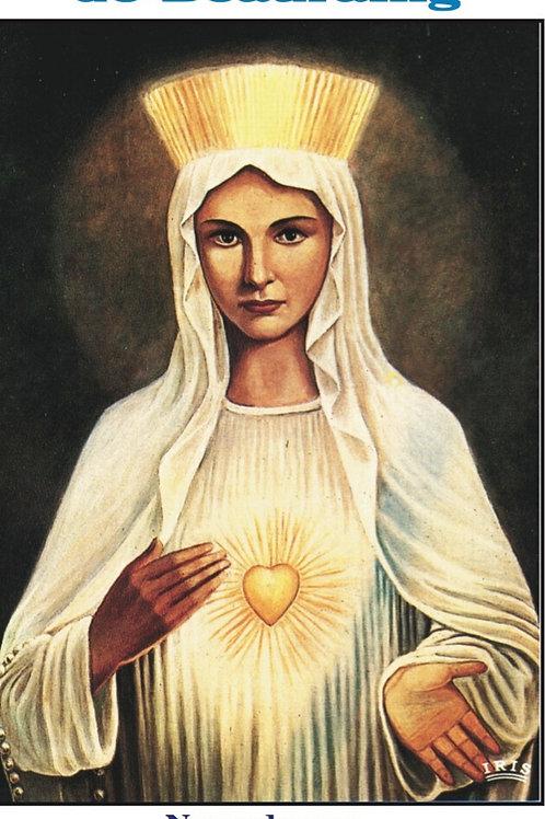 Nuestra Senora de Beauraing