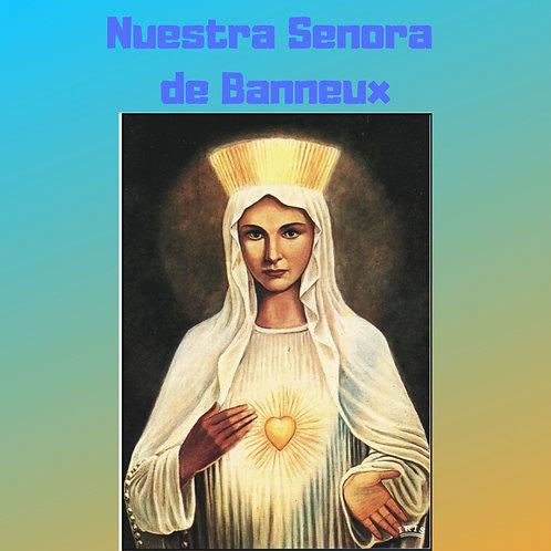 Nuestra Senora de Beauraing Audiobook
