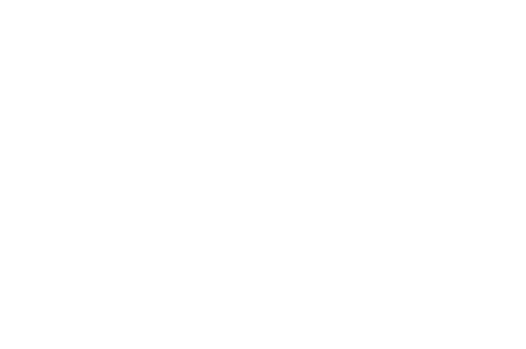OFFICIAL SELECTION - Catalyst Film Festi