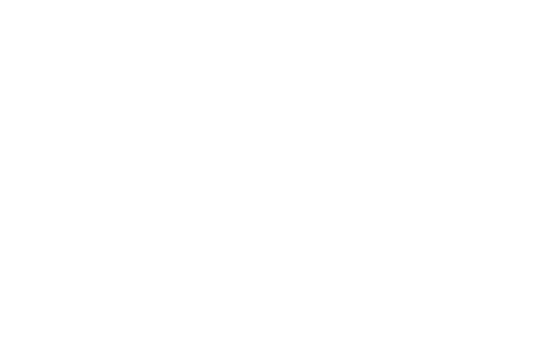 OFFICIAL SELECTION - Classical Arts Film