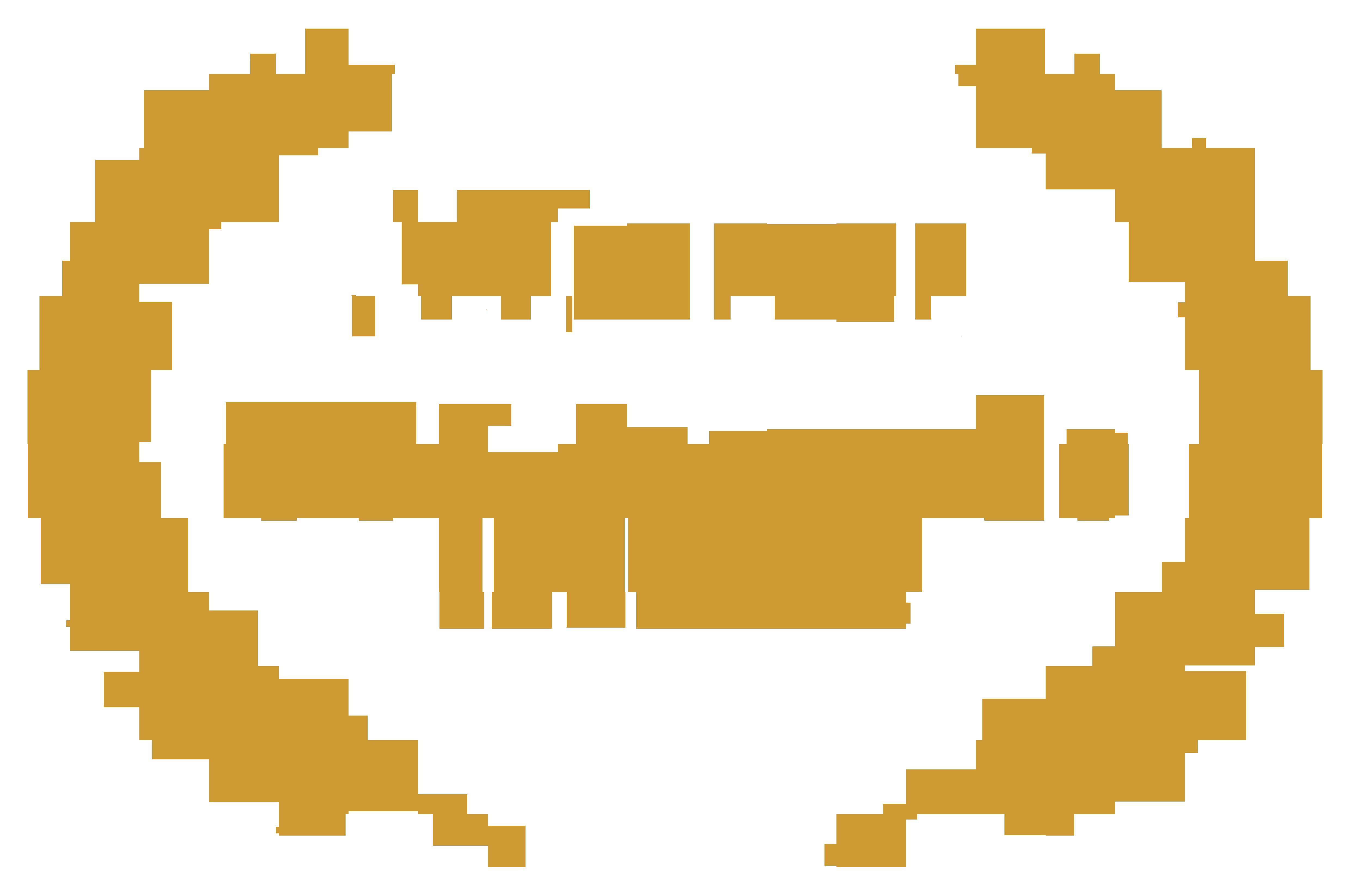 WINNER-GSFAwards-Cannes2018-gold