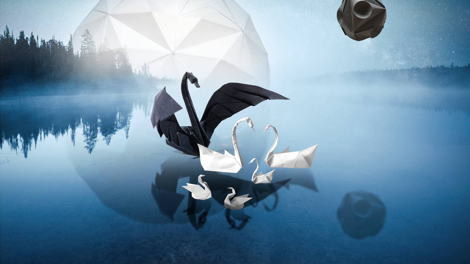 Black Swan 01