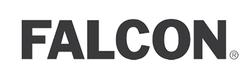 Falcon 2020 logo2.png