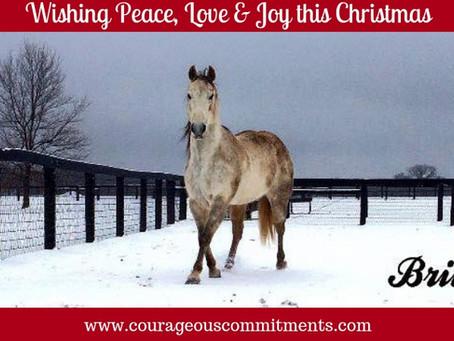 Creating A Christmas Tradition