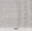 A5563.jpg