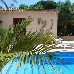 pool_finca_mallorca_palm-1022458.jpg