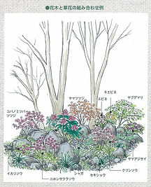 花木と草花の組み合わせ.jpg