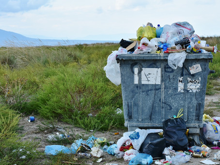 Plastic Free July - A Challenge For Us All To Consider